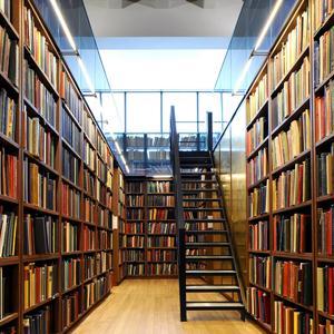 Библиотеки Большого Сорокино